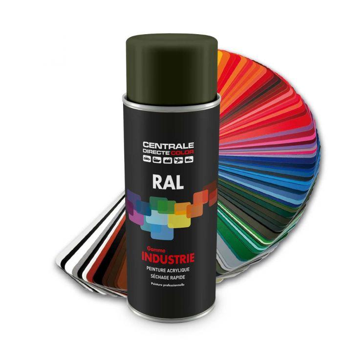 Peinture en spray RAL 6003 Vertolive Brillant CDCRAL6003B