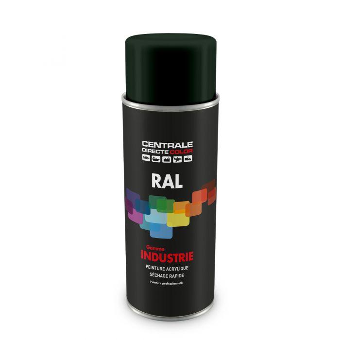 Peinture en spray RAL 6009 Vert sapin Brillant CDCRAL6009B