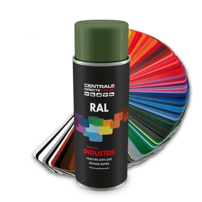 Peinture en spray RAL 6011 Vert réséda Brillant CDCRAL6011B