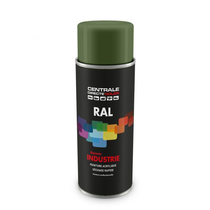 Peinture en spray RAL 6011 Vert réséda Satiné CDCRAL6011S