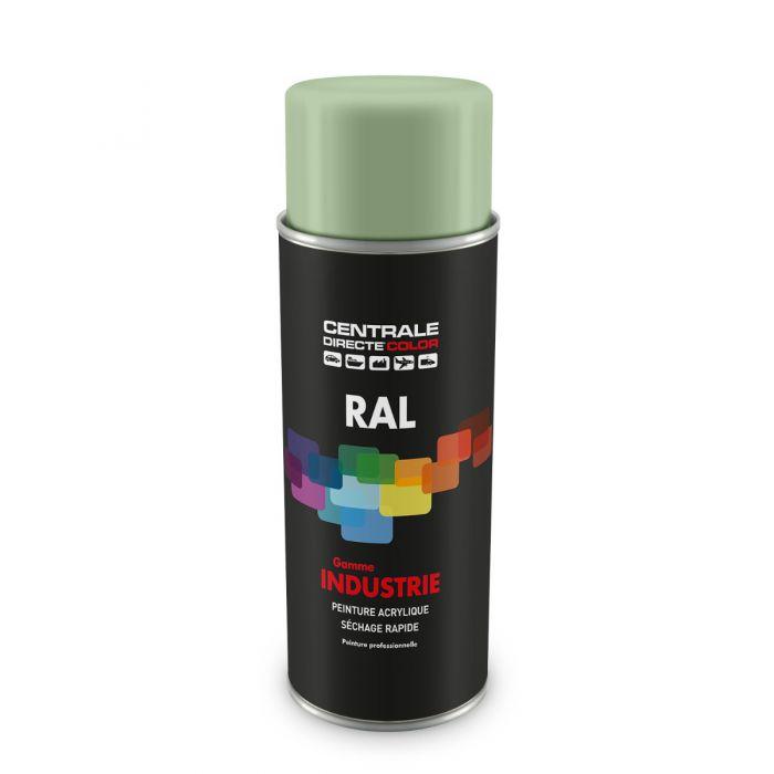 Peinture en spray RAL 6019  Vert blanc Brillant CDCRAL6019B