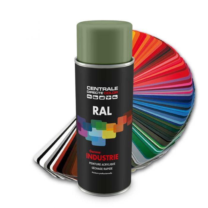 Peinture en spray RAL 6021 Vert pâle Brillant CDCRAL6021B