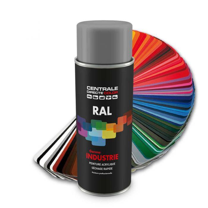 Peinture en spray RAL 7004 Gris de sécurité Brillant CDCRAL7004B