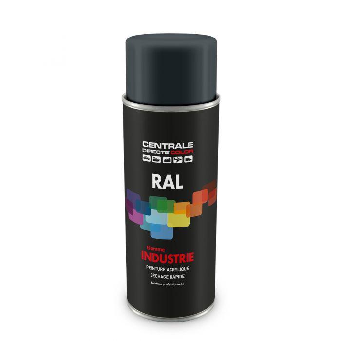 Peinture en spray RAL 7011 Gris fer Brillant CDCRAL7011B