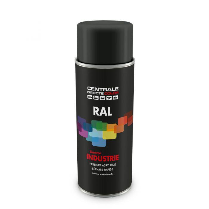 Peinture en spray RAL 7043 signalisation B Brillant CDCRAL7043B