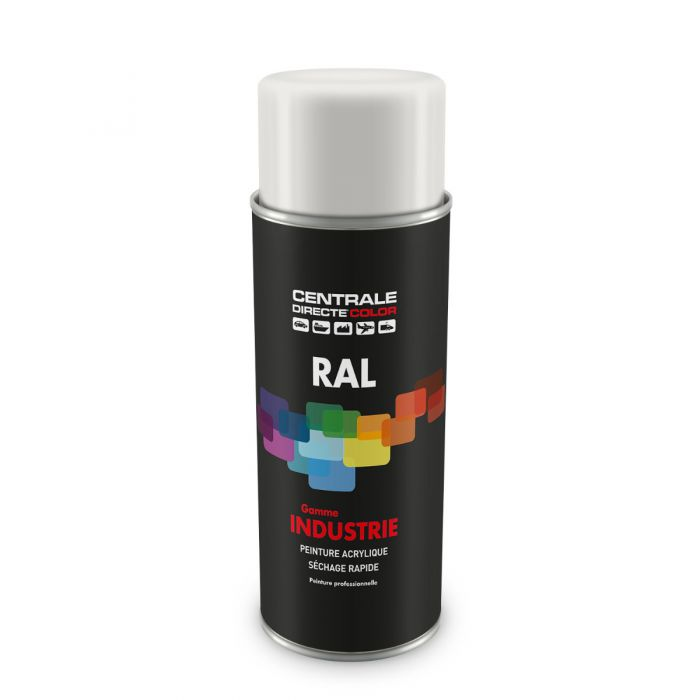 Peinture en spray RAL 9003 Blanc de sécurité Brillant CDCRAL9003B