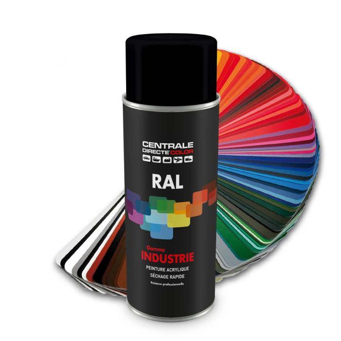 Peinture en spray RAL 9005  Noirfoncé Brillant CDCRAL9005B