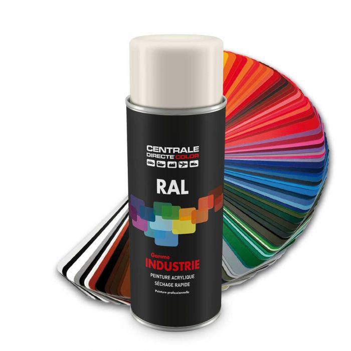 Peinture en spray RAL 9010 Blancpur Satiné CDCRAL9010S