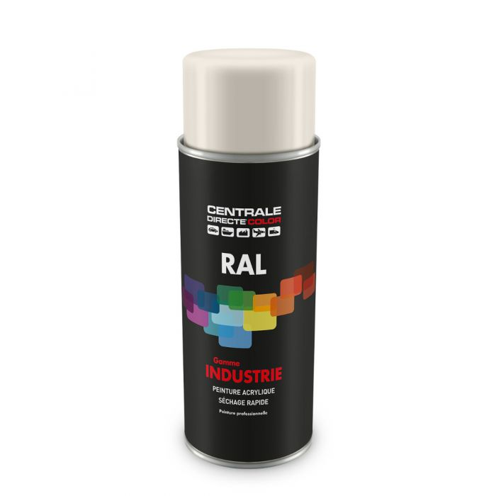 Peinture en spray RAL 9010 Blanc pur Brillant CDCRAL9010B