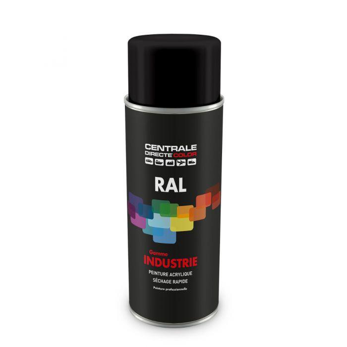 Peinture en spray RAL 9017 Noir signalisation Mat CDCRAL9017M