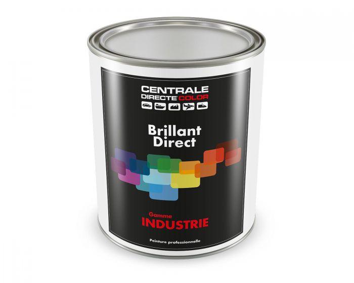 Peinture brillant direct 2K - teinte à la demande dès 1kg CDC2KSOLV