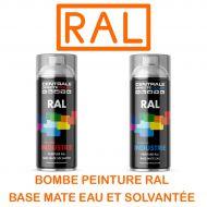 Bombe de peinture Ral base à vernir - Eau ou Solvantée