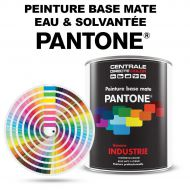 Peinture Pantone® base mate à vernir