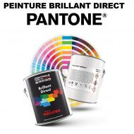 Peinture Pantone® brillant direct 2K
