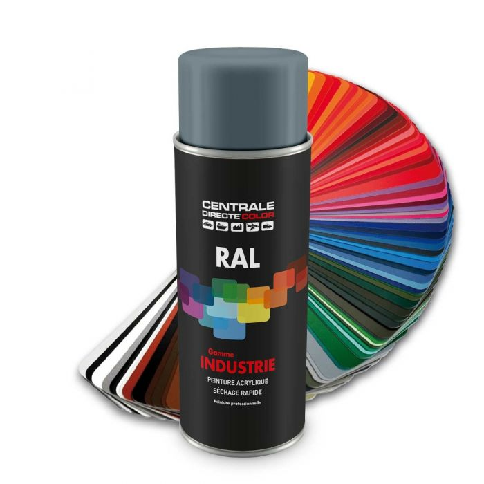Peinture En Spray RAL 7000 Gris Petit Gris Brillant