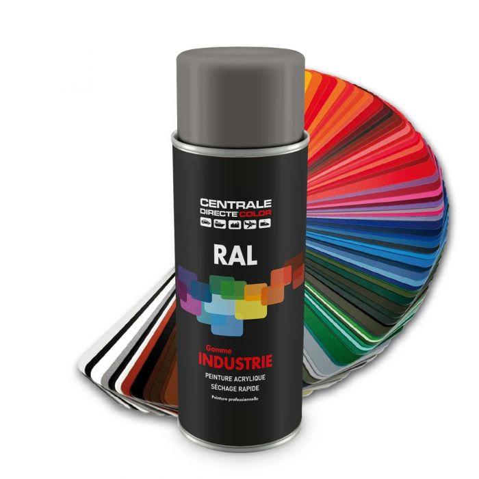 Peinture En Spray RAL 9007 Aluminium Gris Satiné