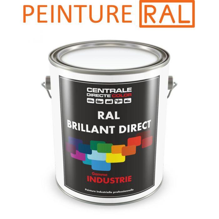 Peinture Ral Brillant Direct 2k