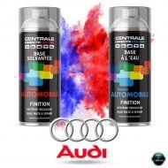 Bombe de peinture Audi base mate tricouche à vernir