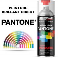 Bombe peinture Pantone® brillant direct 2K