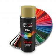 Peinture en spray RAL 1001 Beige Brillant
