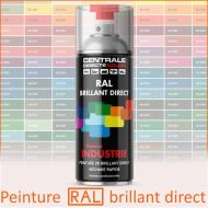 Bombe peinture RAL brillant direct 2K