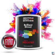 Peinture Fiat brillant direct