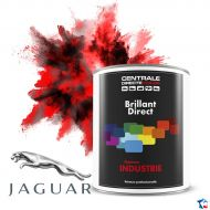 Peinture Jaguar brillant direct