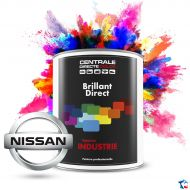 Peinture Nissan brillant direct