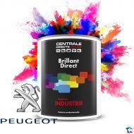 Peinture Peugeot brillant direct