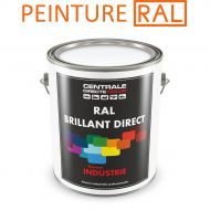 Peinture RAL brillant direct 2K