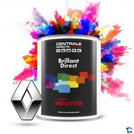 Peinture Renault brillant direct