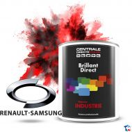 Peinture Renault Samsung brillant direct