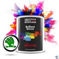 Peinture Skoda brillant direct