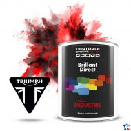 Peinture Triumph brillant direct
