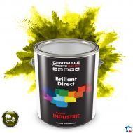 Peinture industrielle BTP brillant direct