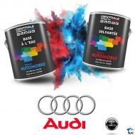 Peinture Audi base mate à vernir
