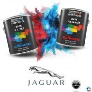Peinture Jaguar base mate à vernir