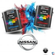 Peinture Nissan base mate à vernir