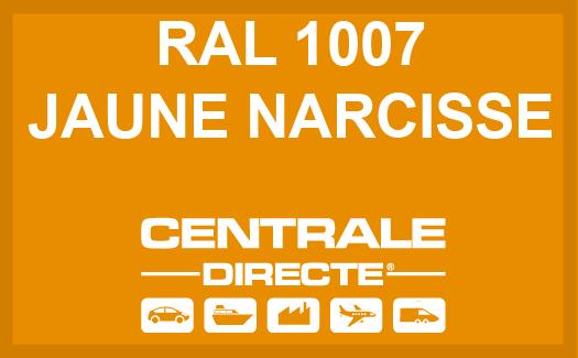 Couleur RAL 1007 Jaune narcisse