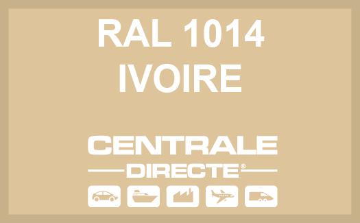 Couleur RAL 1014 Ivoire