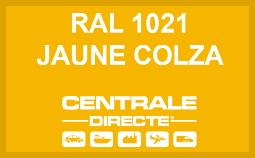 Couleur RAL 1021 Jaune Colza