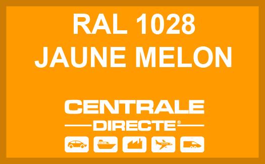 Couleur RAL 1028 Jaune melon