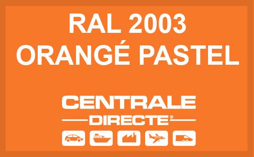Couleur RAL 2003 Orangé pastel