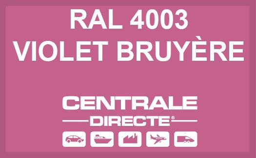 Couleur RAL 4003 Violet bruyère