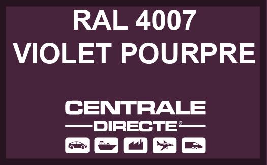 Couleur RAL 4007 Violet pourpre
