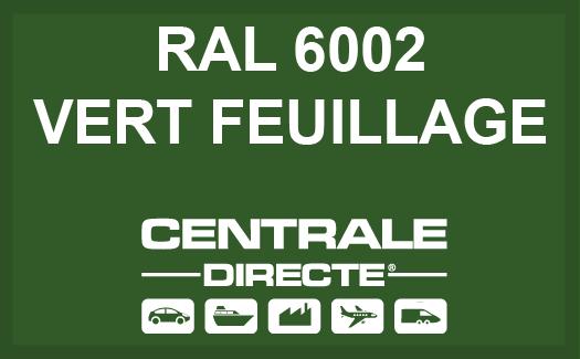 Couleur RAL 6002 Vert feuillage