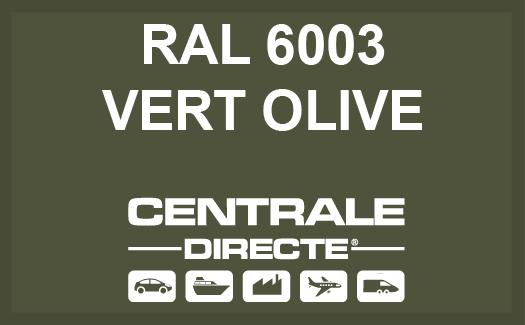 Couleur RAL 6003 Vert olive