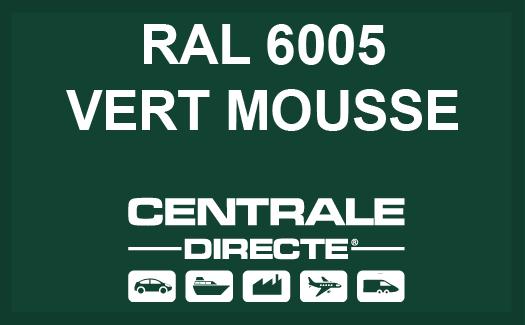 Couleur RAL 6005 Vert mousse