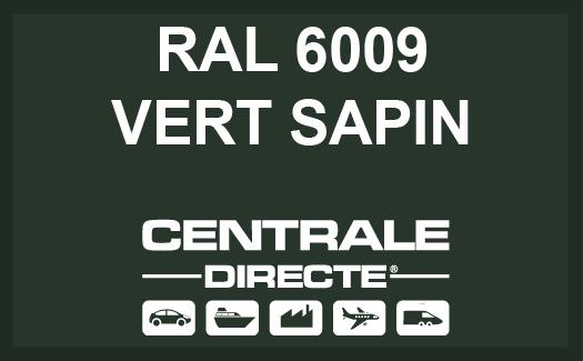Couleur RAL 6009 Vert sapin