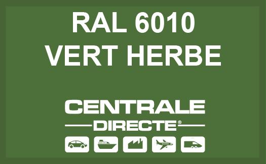 Couleur RAL 6010 Vert herbe